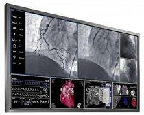 Monitor LCD de 57.5 pulgadas EIZO RadiForce LS580W para la venta