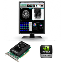 3MP Color Eizo RadiForce RX350-SH-NM200 LCD LED para la venta